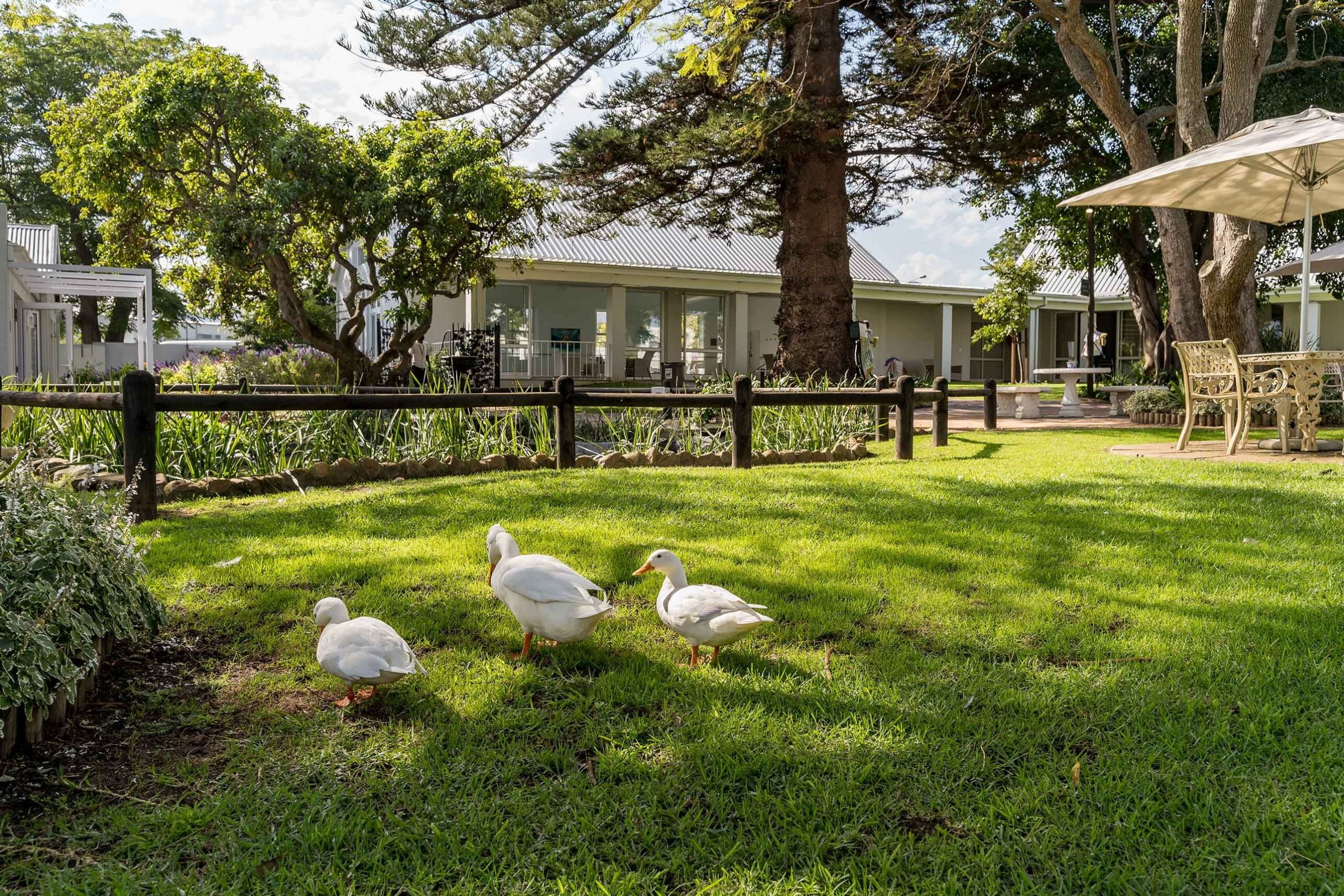 Social activity, relaxation, good food and community are a Western Cape Retirement dream at Faircape Life