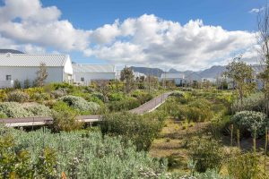 Why The Western Cape Is A Retirement Hotspot 2021